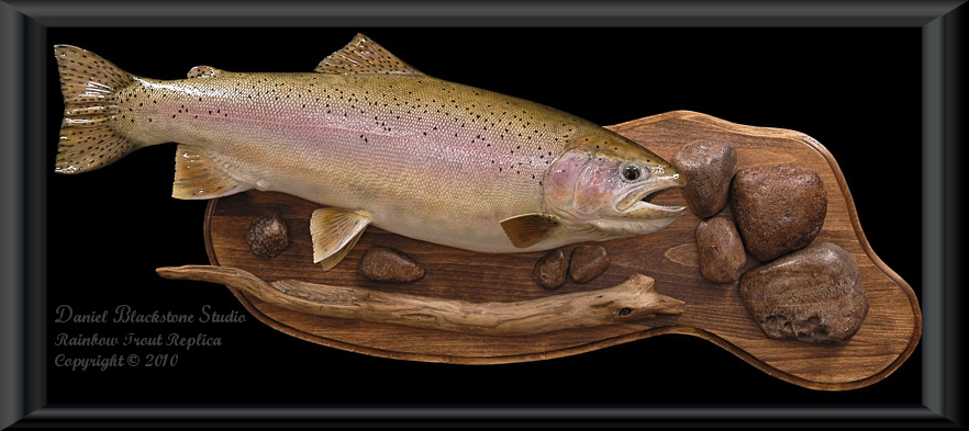 Rainbow Trout Fiberglass Fish Replicas Amp Reproductions
